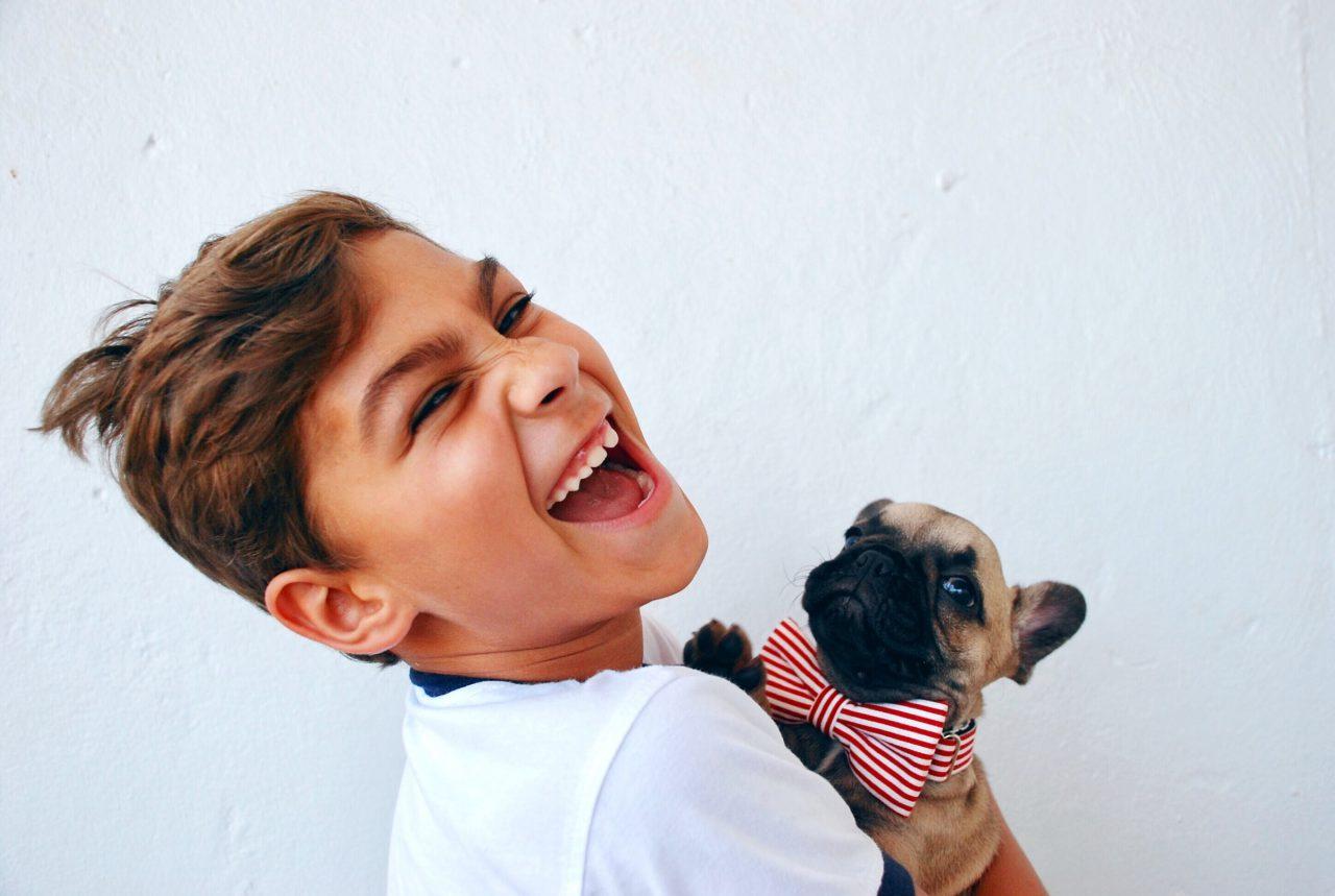 Boys holds French Bulldog puppy