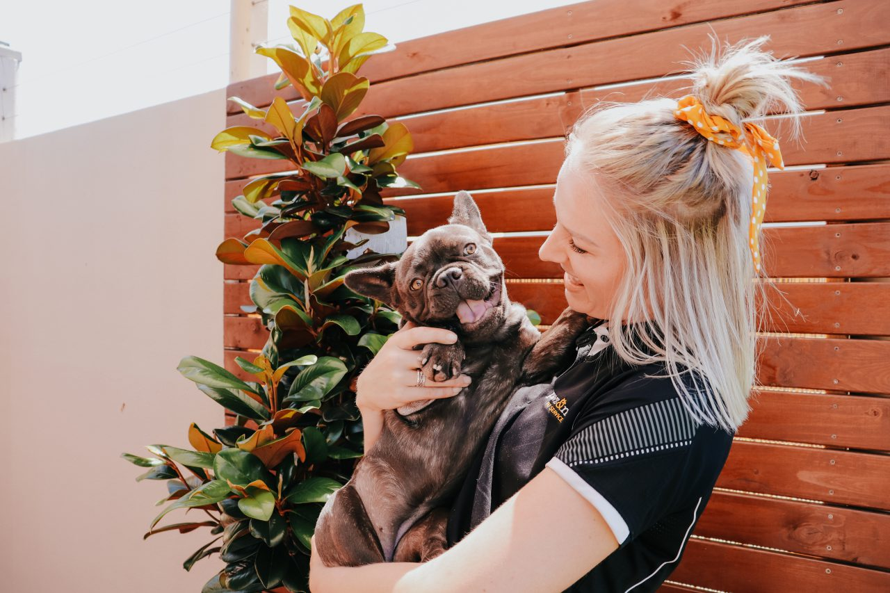 Woman holds smiling French Bulldog